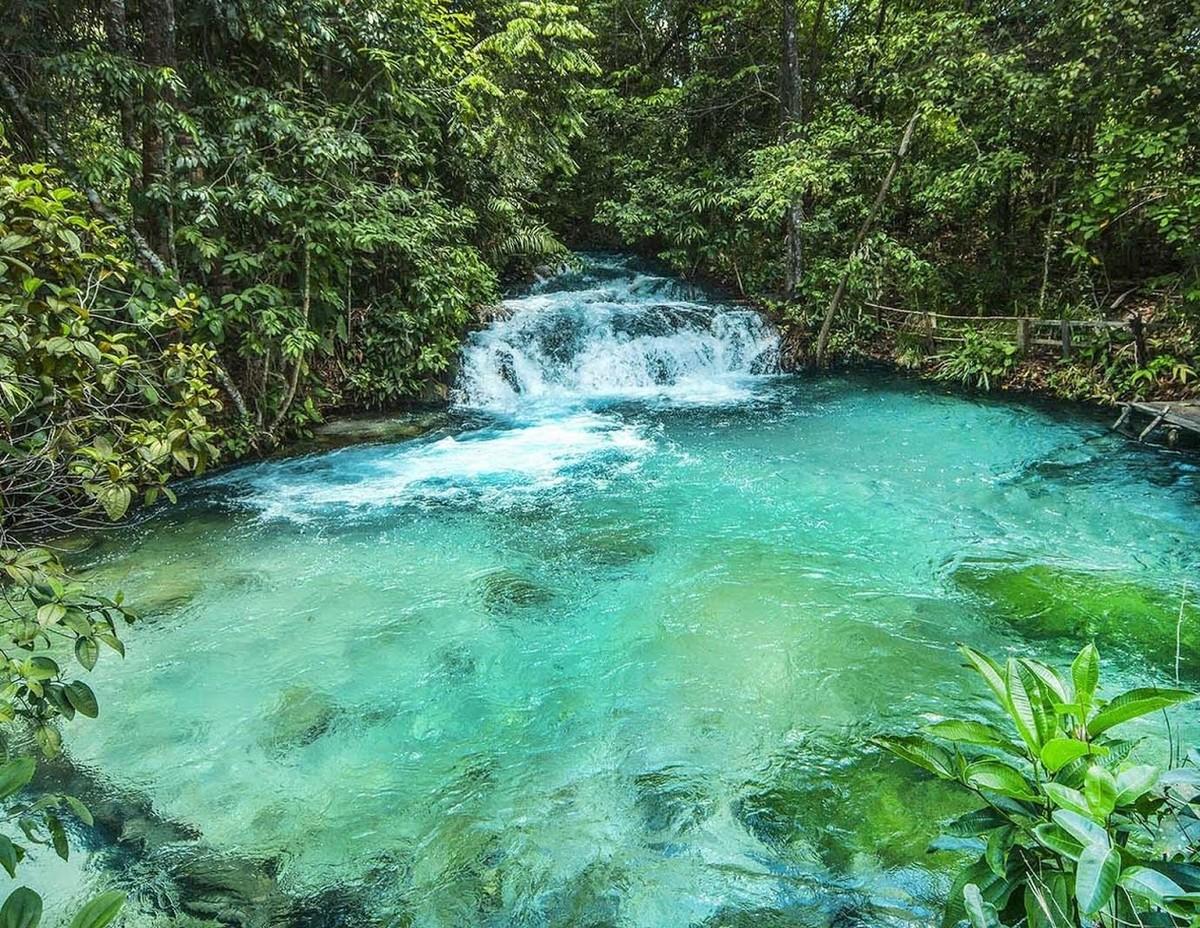 Cachoeira da formiga com uma pequena queda d'água. A cachoeira possui águas cristalinas de coloração verde e algumas pedras grandes no fundo das águas. No centro está uma pequena queda d'água entre a vegetação das margens. Esta vegetação possui coloração verde escuro, muitas folhas, cipós e caules finos.